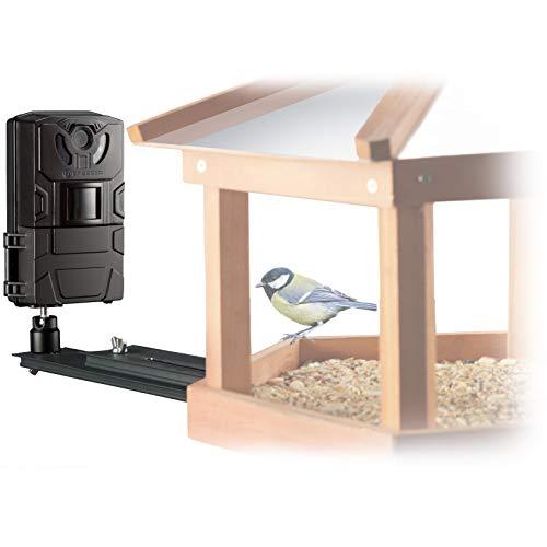 Bresser Vogel Kleintier-Kamera SFC-1 Überwachungskamera für heimische Vögel oder andere Kleintiere mit Bewegungssensor für Fotos und Videos in Full HD Qualität