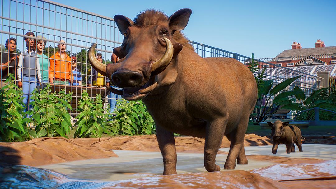 Planet Zoo Warzenschwein