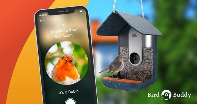 Bird Buddy Futterhaus